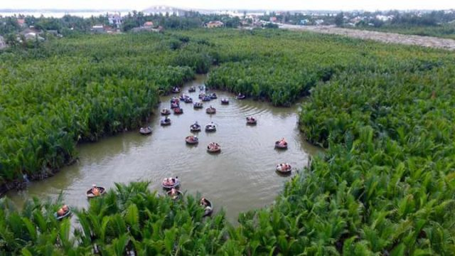 Water coconut forest in Hoi An- Culture Pham Travel