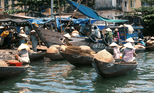 Hoi An fish market- Culture Pham Travel