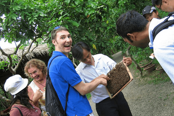 Honey bees- Mekong Delta Tour From Saigon- Culture Pham Travel