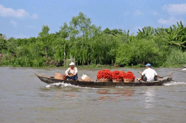 Mekong Delta Tour From Saigon- Culture Pham Travel