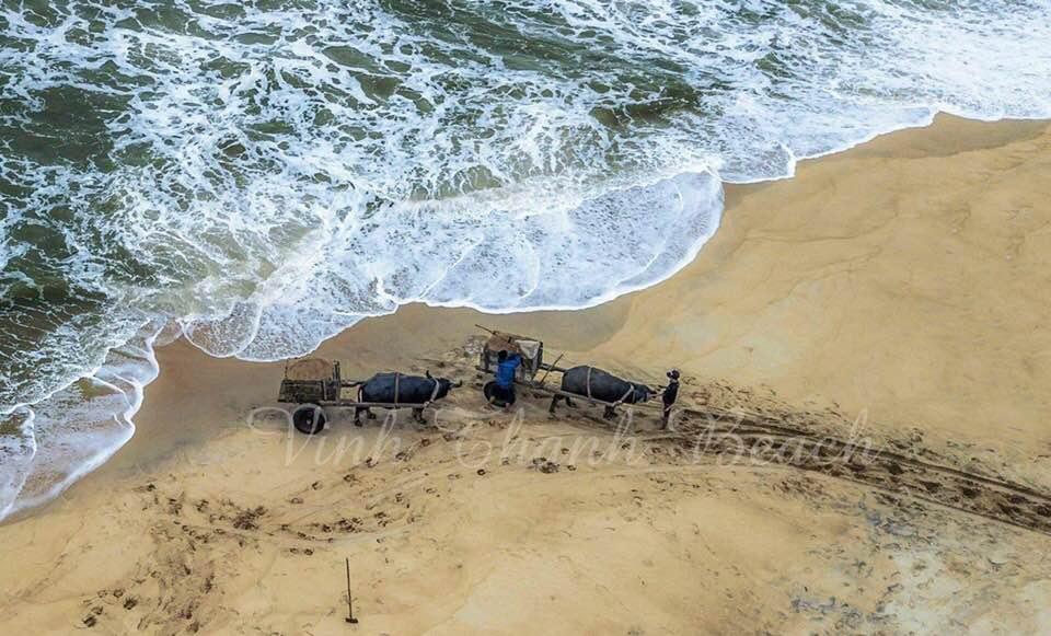 Vinh Thanh Beach- Culture Pham Travel